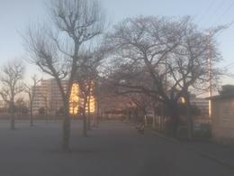 北公園2.jpg