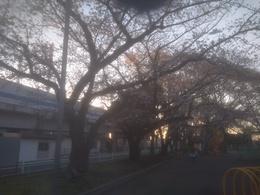 北公園1.jpg